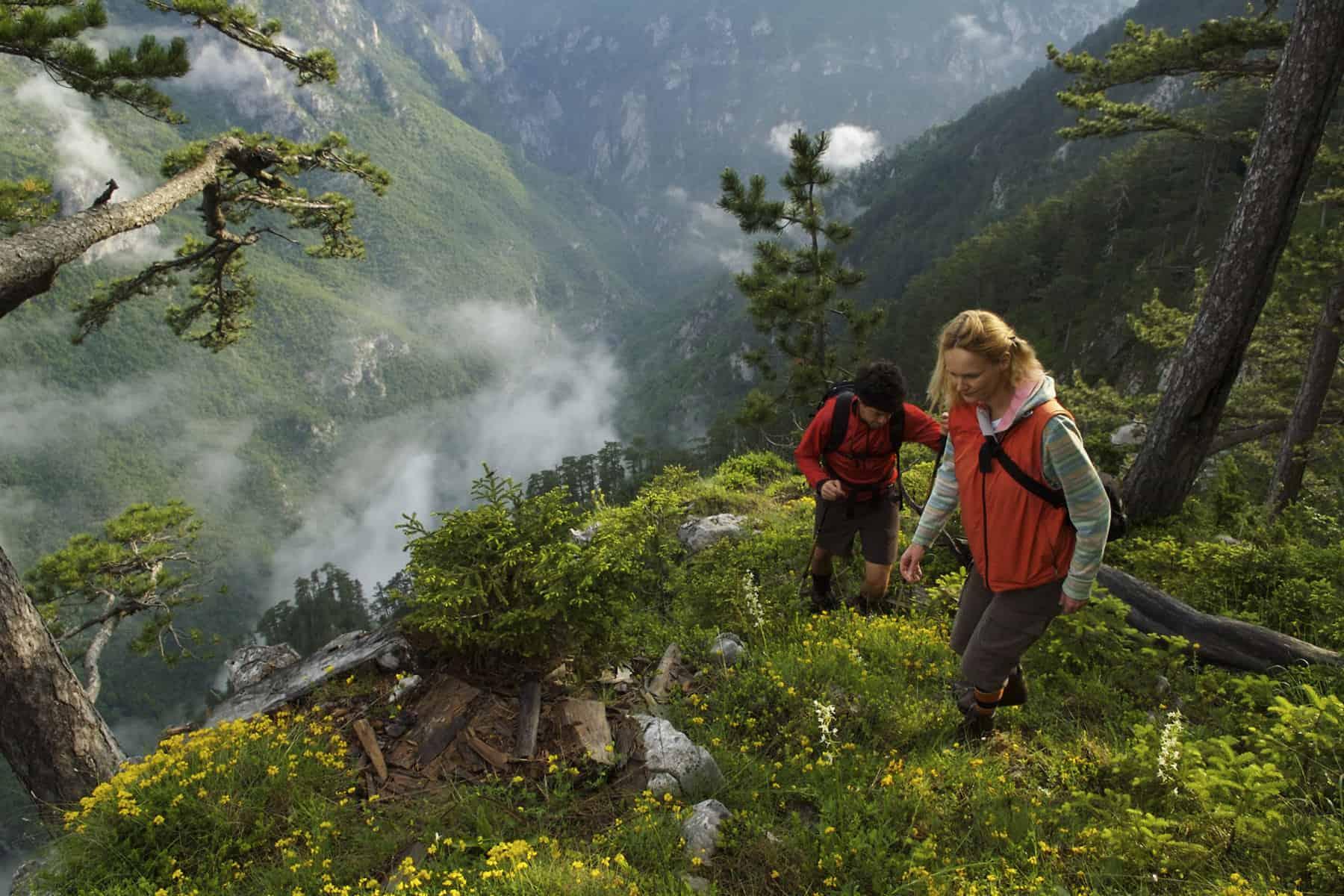 Hiking Lever Tara