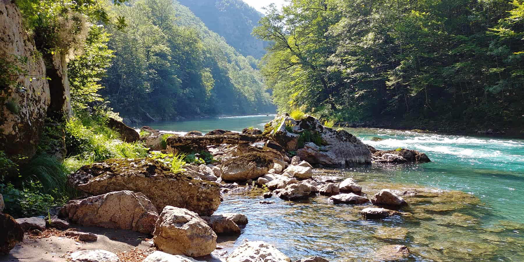 Fly fishing adventure in tara river