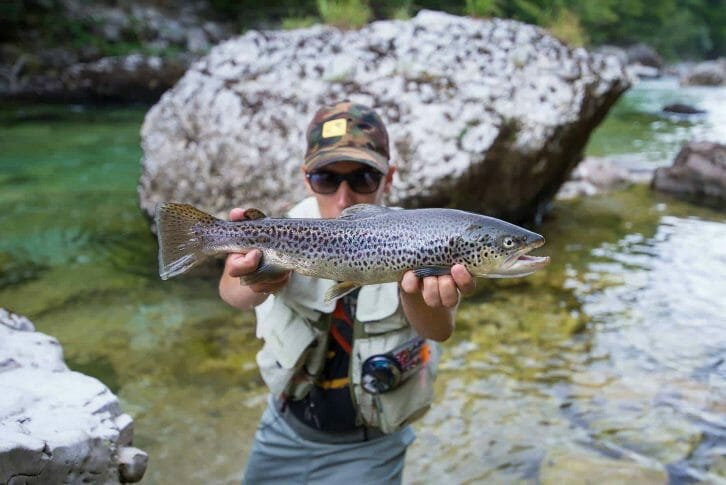 11Fisherman holding a brown trout in river