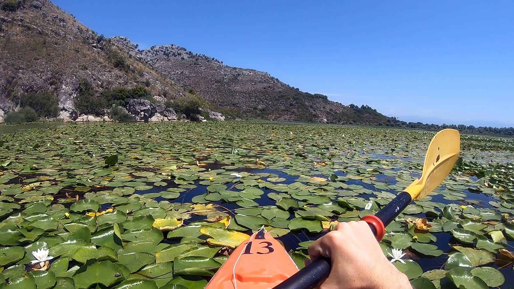Kayak on Skadar Lake at a sunny day