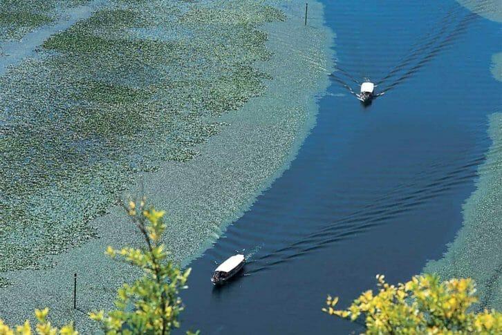 11Two boats on Skadar Lake, Montenegro