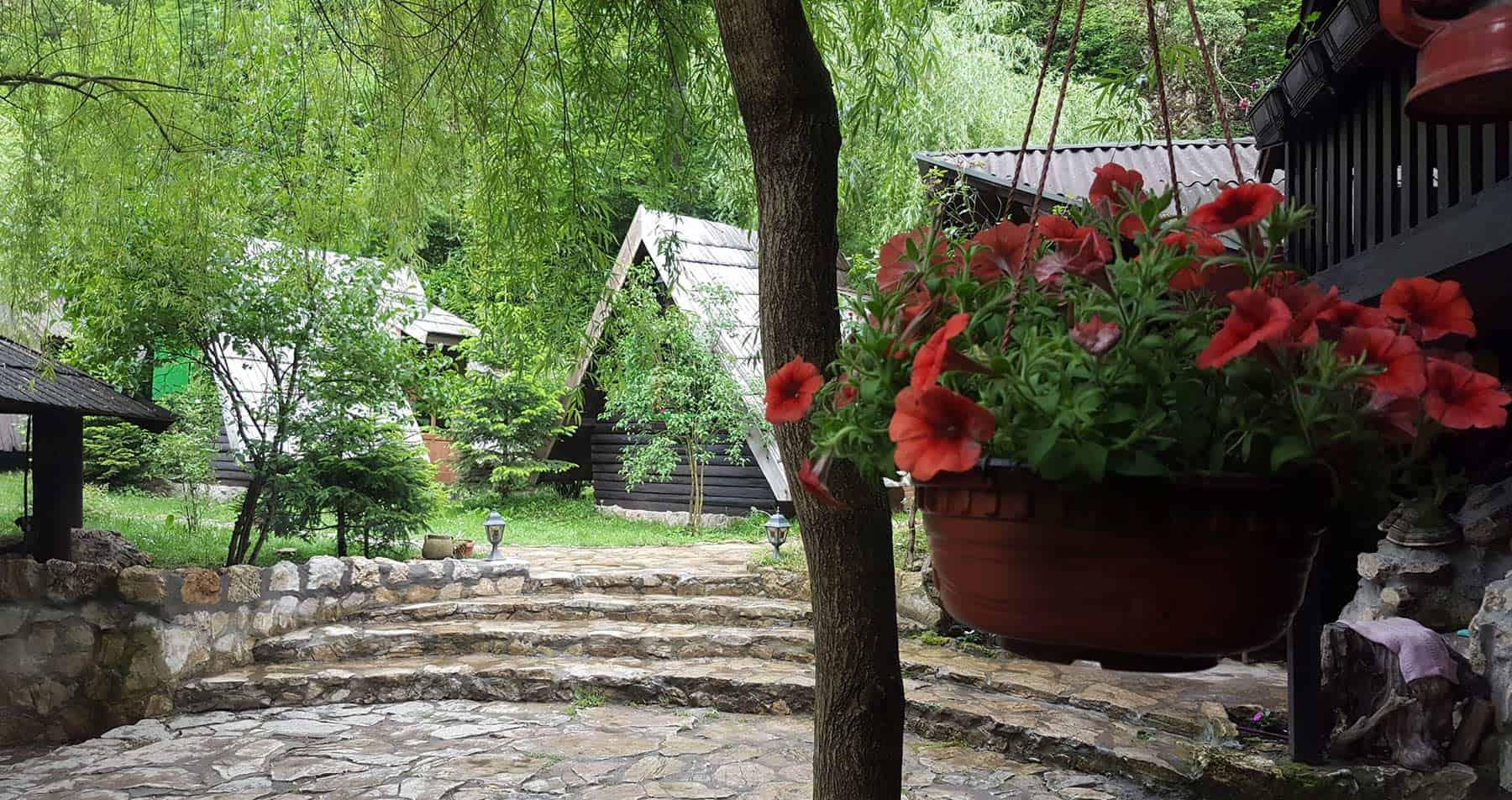 Flowers in garden rafting houses, Tara