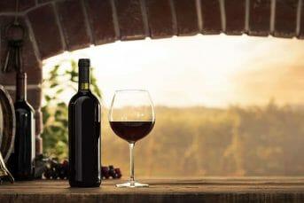 Wine tasting in the cellar with Montenegro Adventure