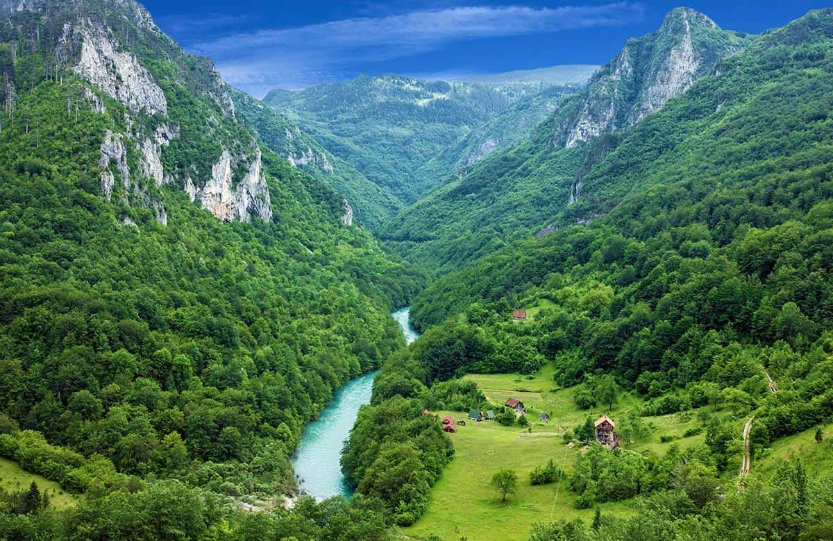 Canyon Tara river surrounded by gorgeous mountains and forest