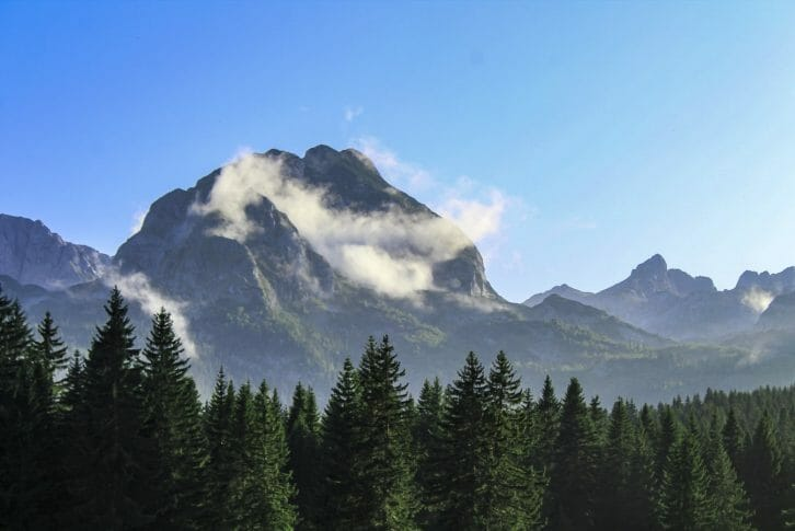 11Peak Medjed and forest on Durmitor in Northern Montenegro