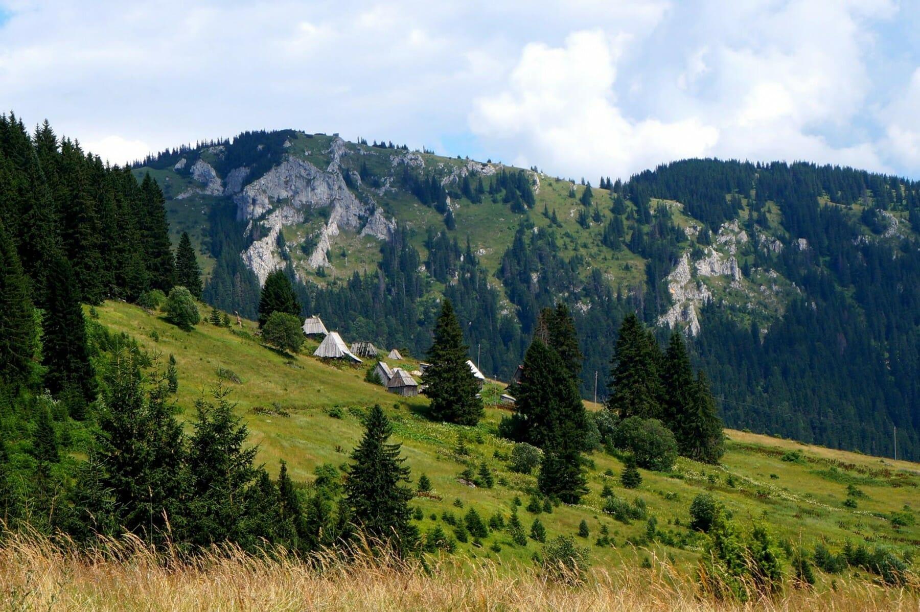 Ljubisnja mountain pljevlja montenegro