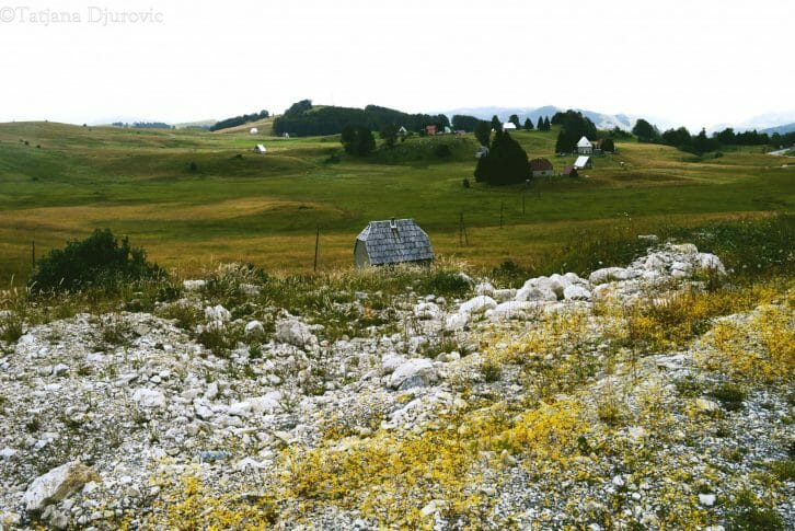 11mountain-house-in-the-fields-of-durmitor
