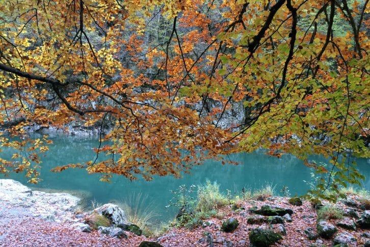 11Fishing ground on the river Cehotina Pljevlja Montenegro